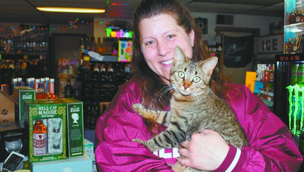 Serenity Keppers, employee at Y-Knot Liquor in Motley, gets some assistance recently from Alice the cat, one of the pets that calls the store 'home.' Although she was reluctant to be open on Sundays, store owner Sue Kobus said that they have decided to be open on Sundays during the summer months. (Staples World photo by Dawn Timbs)